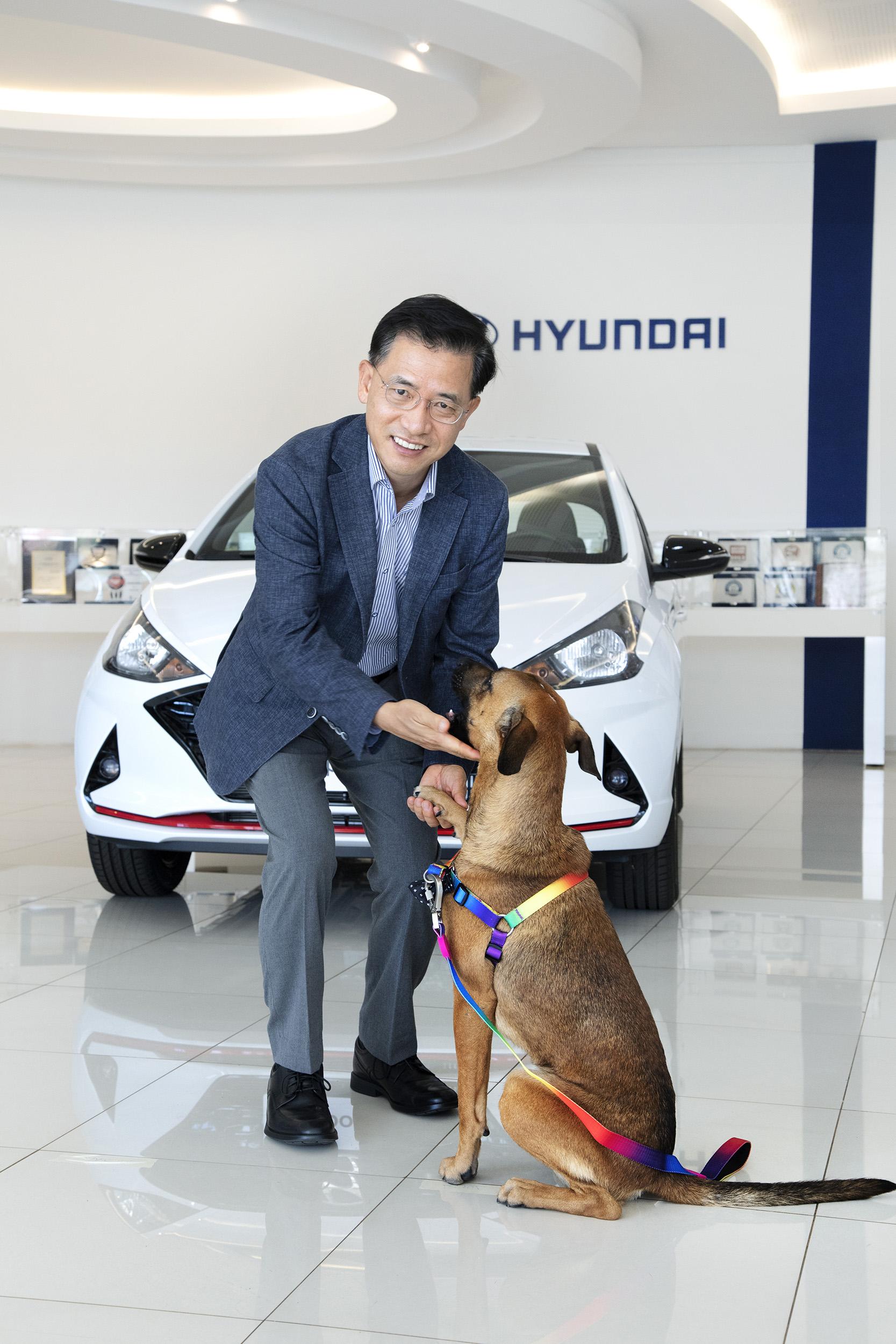 Cão da Hyundai - Caramelo Tucson